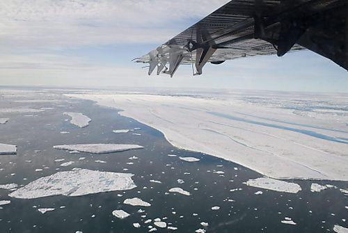 Arcticiceshelf
